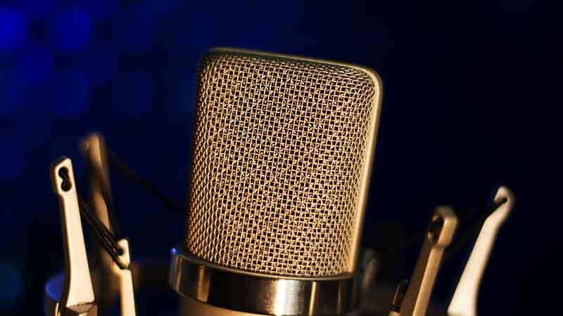Black with Gold Print Mic NEW MXL 440 Studio Recording Condenser Microphone